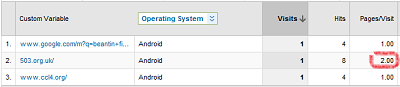 Details of a screenshot from Google Analytics showing that a 503.org.uk was a referrer